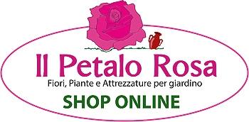 Petalo rosa