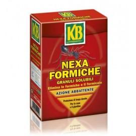 NEXA FORMICHE GRANULI SOLUBILI 800 G. KB - SCOTTS INSETTICIDA ANTIFORMICHE