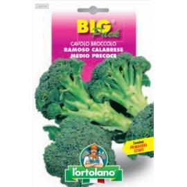 L'ORTOLANO BIG PACK CAVOLO Broccolo ramoso Calabrese medio precoce